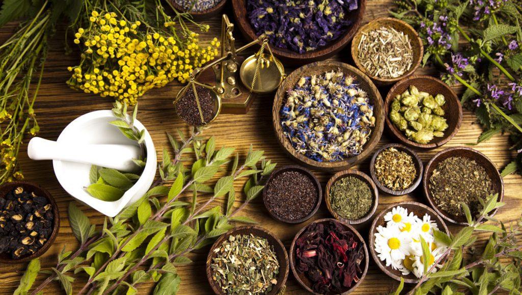 The Antiviral, Anti-Inflammatory Effects of Natural Medicinal Herbs and Mushrooms and SARS-CoV-2 Infection