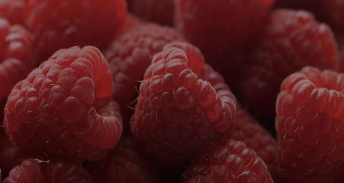 Red Raspberry Seeds